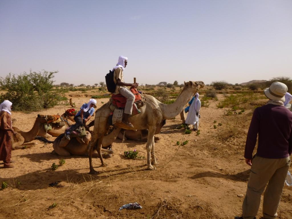 Desert transport minister